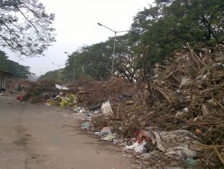 Waste accumulation at Anna Main Road, MGR Nagar Chennai. Pic: Bhavani A P