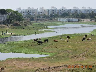 Why CMWSSB's Dial for Water scheme may not be the right solution for